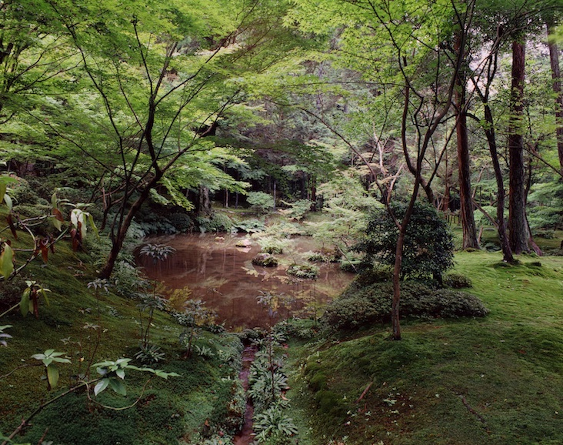 2015GL#3Saiho-ji Kyoto1980Photo 3l9325