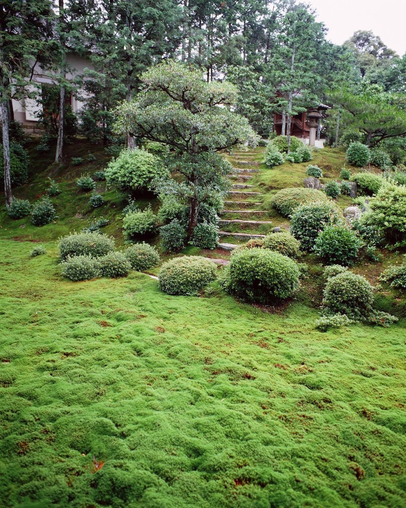 2015GL#28 Kaisando KyotoStairs28-256-865